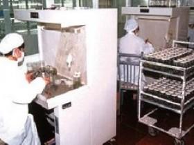 菇耳壮提升食用菌菌种质量的几种表现